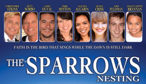 The-Sparrows-Nestings-promo